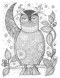 Page 73 of Soul of the Woodland: A Stress Relieving Adult Coloring Book, Celebration Edition by Blue Star Premier and illustrator Suzy Joyner