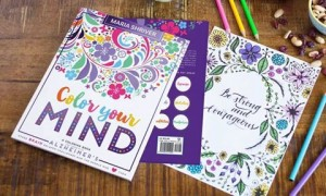 November is National Alzheimer's and Caregiving Month!! We are honored to be collaborating on an adult coloring book specifically for those with Alzheimer's and their caregivers