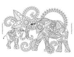 elephants - Exotic Animal Designs: A Stress Relieving Adult Coloring Book by Katie Packer and Blue Star Coloring
